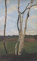Landscape with Birch trunks, c.1901, modersohnbecker