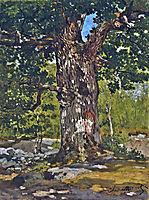 The Bodmer Oak, 1865, monet