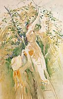 The Cherry Tree (study), 1891, morisot