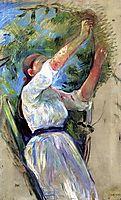 Girl gathering cherries, 1891, morisot