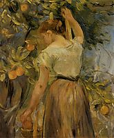 Young Woman Picking Oranges, 1889, morisot