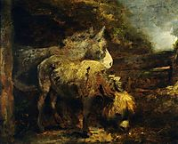 Donkeys, morland