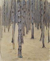 Pine forest in winter, c.1907, moser