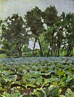 Cabbage Field with Willows, c.1893, musatov