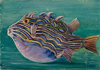 Exotic Fish, 1880, north