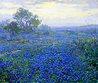 A Cloudy Day, Bluebonnets near San Antonio, Texas, 1918, onderdonk