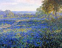 Fields of Bluebonnets, 1920, onderdonk