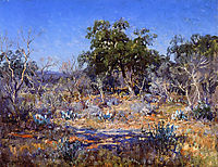 A January Day in the Brush Country, 1922, onderdonk