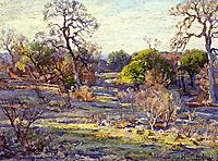 Late Afternoon, Alamo Heights, San Antonio, Texas, 1922, onderdonk