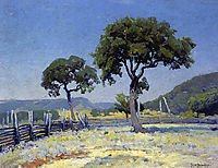 Live Oak Trees on Williams- Ranch, Bandera County, 1915, onderdonk