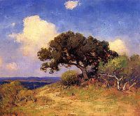 Old Live Oak, 1910, onderdonk
