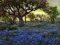 Old Live Oak Tree and Bluebonnets on the West Texas Military Grounds, San Antonio, 1920, onderdonk