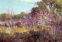 Redbud Tree in Bloom at Leon Springs, San Antonio, 1921, onderdonk