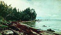 A bay, 1878, orlovsky