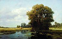 Landscape with swamp, orlovsky