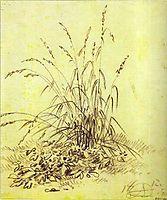 Grass, 1812, orlowski