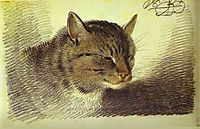 Head of a Cat, 1823, orlowski