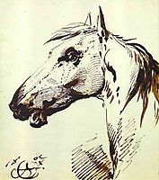 Head of a Horse, 1807, orlowski