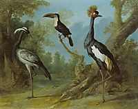 Demoiselle Crane, Toucan, and Tufted Crane, 1745, oudry