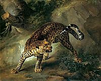 Leopard, 1741, oudry