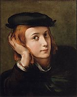 Portrait of a Young Man , parmigianino