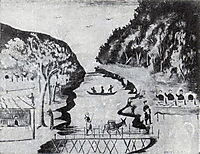 Bridge graft (Viris Hidy), pirosmani
