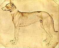 Dog, pisanello