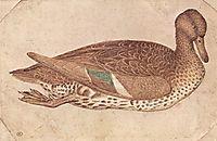 Duck, 1440, pisanello