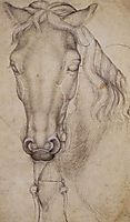 Study of the Head of a Horse, 1439, pisanello