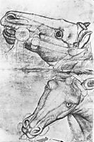 Study of Horse Heads, 1433, pisanello