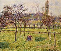 Apple Trees in a Field, 1892, pissarro