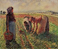 Picking Peas, c.1893, pissarro