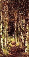 The Birchwood Alley, 1880, polenov