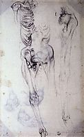 Anatomical study, pontormo