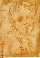 Self Portrait, c.1527, pontormo