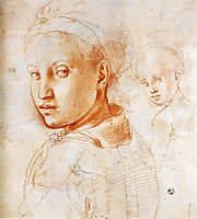 Study of a Boy Turning His Head, c.1529, pontormo