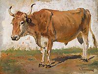 Ox, pymonenko