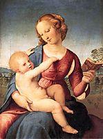Colonna  Madonna, c.1508, raphael