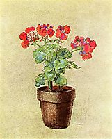 Geraniums, 1902, redon
