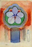 Strange Orchid, redon