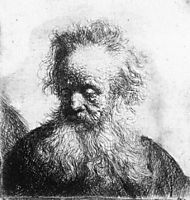 Old Man with Flowing Beard, Looking down Left, rembrandt