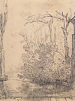 Overhanging bushes in a ditch, c.1640, rembrandt