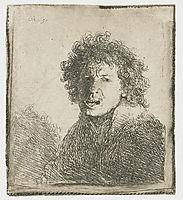Self-portrait open mouthed, 1630, rembrandt