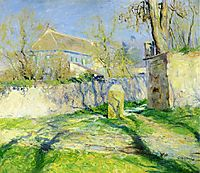 The Blue House, rose