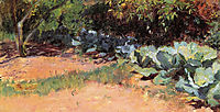 The Cabbage Patch, 1891, rose