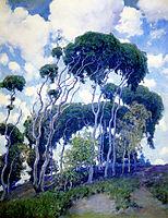 Laguna Eucalyptus, 1917, rose