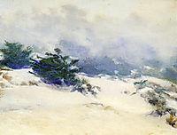 Misty Dunes, Carmel, rose