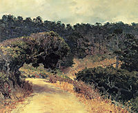Monterey Forest, 1919, rose