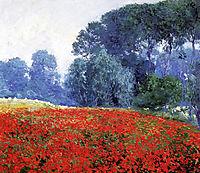 Poppy Field, 1910, rose