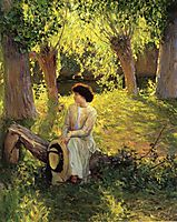 Warm Afternoon, 1910, rose